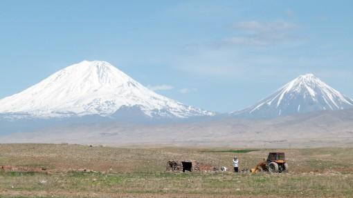 24-4- Ararat L1300971