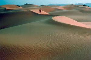 Algeria 02 Bemi Arbes B