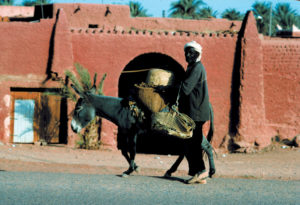 Algeria 09 Timimoum B