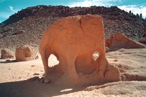 Algeria Elefante scolpito