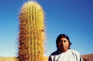 Cile Cactus