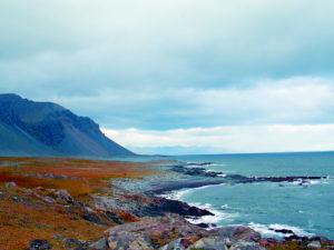 Islanda strada costiera
