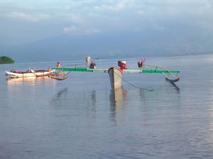 Fondo barche