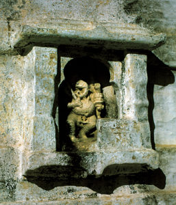 India Scimmia