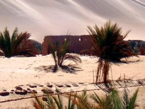 Libia Bacci 212 tramonto