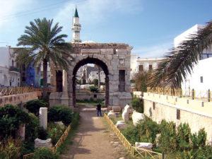 Libia Bacci 370 arco