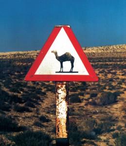 Libia cartello Dromedario