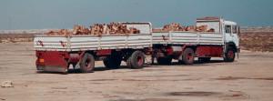 Libia camion dromedari
