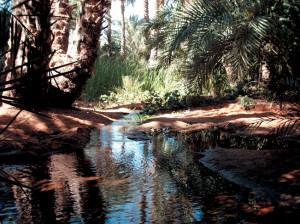 Mauritania acqua 167