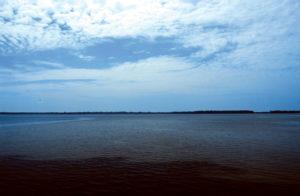 O Rio Negro 22