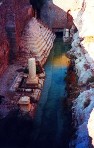 Palmyra Sorgente