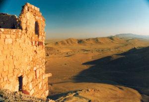 Palmyra dal Castello di Qalaat
