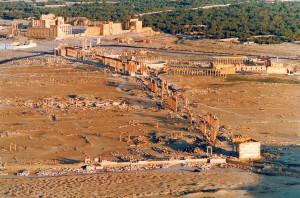 Palmyra le rovine dal Castello di Qalaat