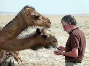 Roberto con 2 cammelli L1380686
