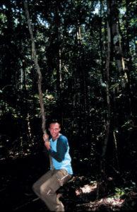 V Amaz liana 31