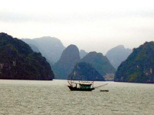 Vietnam 4631