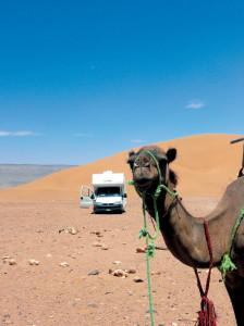 la duna vici